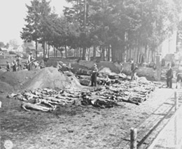 Signal Corps Photos: Bodies at the Grave Trench Site